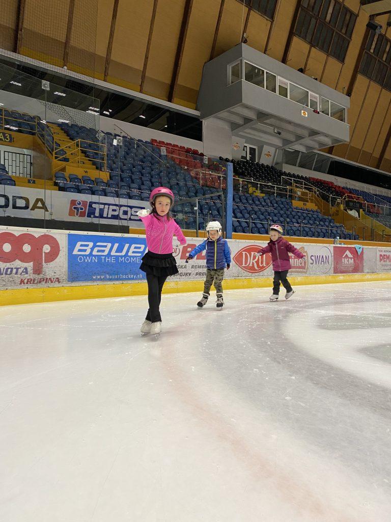 Detičky na ľade